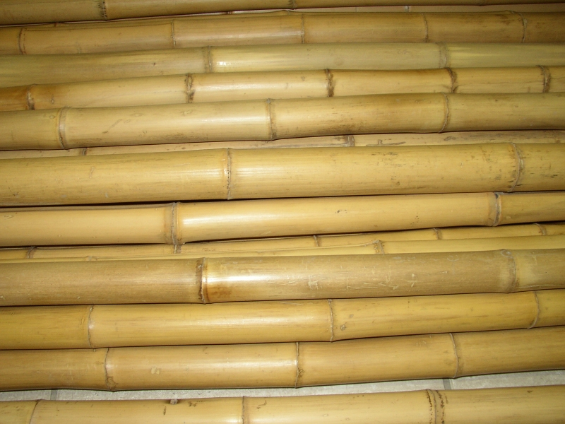 Bambusová tyč 3- 4 cm, délka 2 metry podélně prasklá